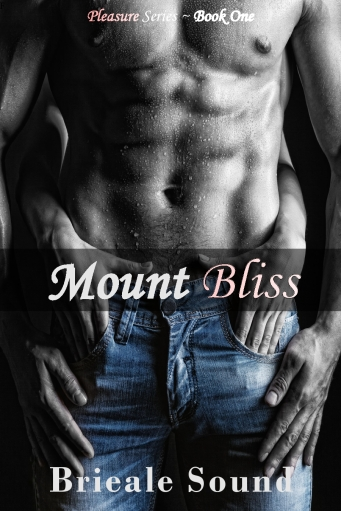 Mount Bliss book cover-page0001 (1)